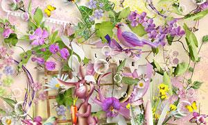 小鸟边框与花朵梯子等欧美剪贴素材