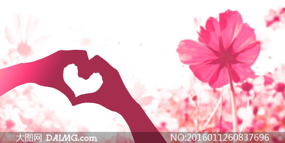 红色花卉植物与心形等创意高清图片