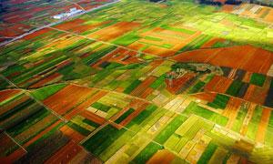高空俯瞰农田摄影图片