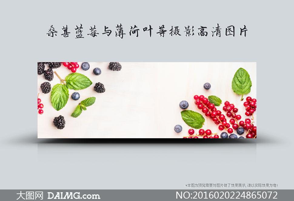桑葚蓝莓与薄荷等特写摄影高清图片