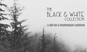 森林照片黑白老照片效果PS动作