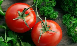 新鲜的西红柿与青菜等摄影高清图片