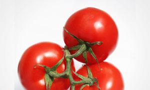 可口的西红柿近景特写摄影高清图片