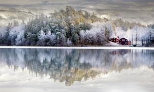 平静湖面与挂满雾凇的树木高清图片