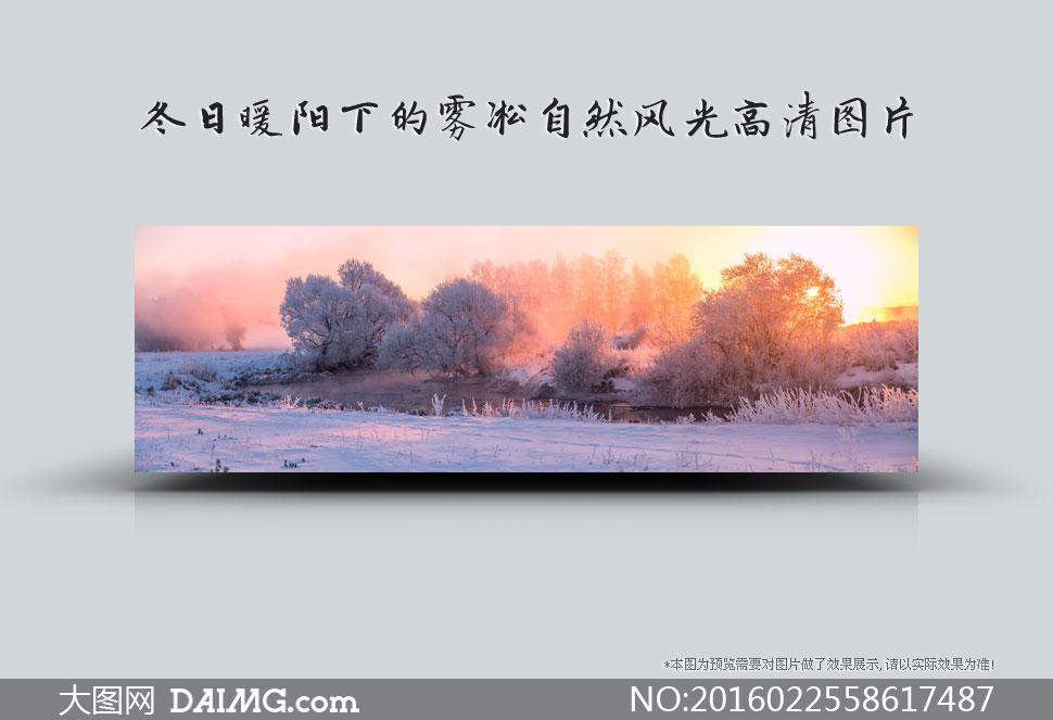 冬日暖阳下的雾凇自然风光高清图片