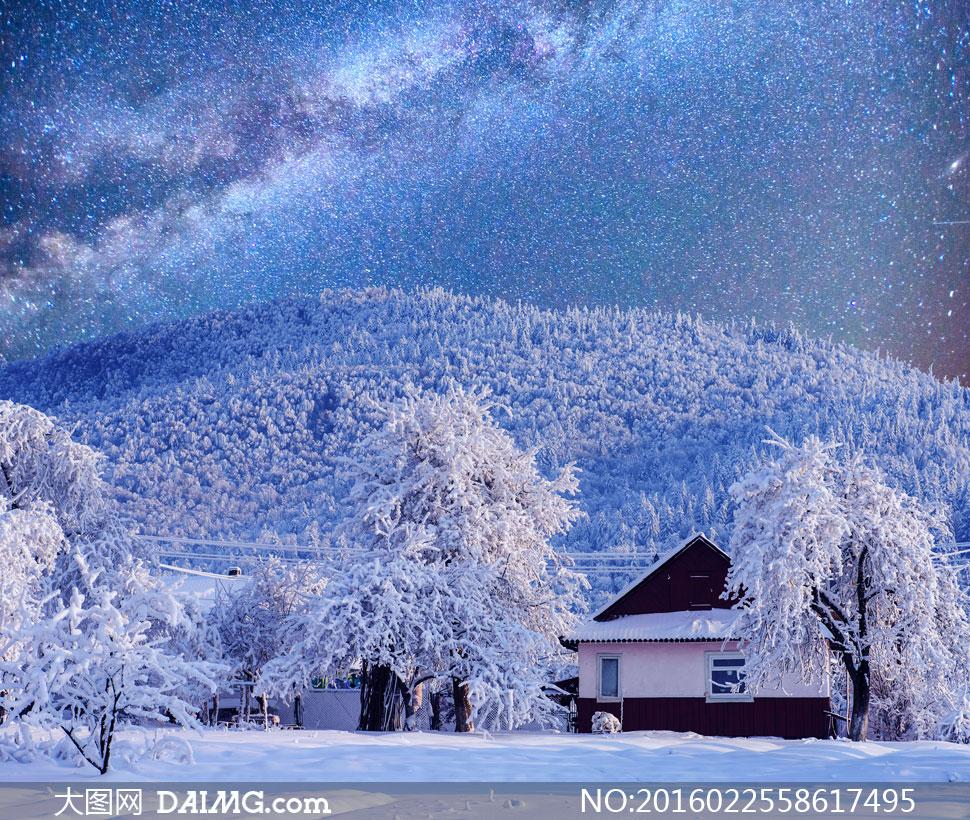 关 键 词: 高清大图图片素材摄影自然风景风光树木大树冬天冬季寒冷