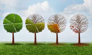 用凋零的树叶诠释数据创意高清图片