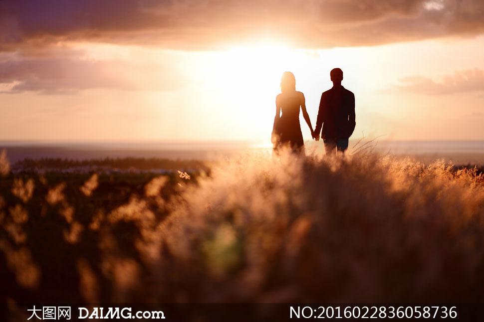 背影手拉手手牵手草丛男女情侣恋人逆光阳光天空云彩
