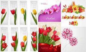 郁金香兰花等花卉植物设计矢量素材