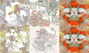 線描風格花鳥插畫創意設計矢量素材