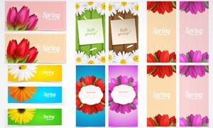 花朵等元素Banner设计矢量素材V2