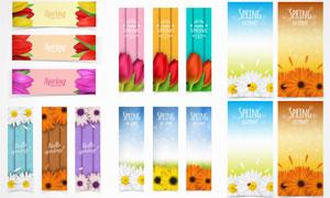 花朵等元素Banner设计矢量素材V3