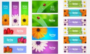 花朵等元素Banner设计矢量素材V4