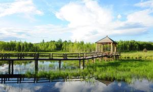 蓝天下的吉�春�湿地美景摄影图片