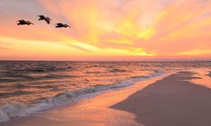 天际霞光与汹涌的海水风光高清图片