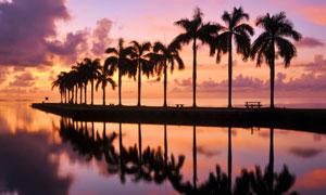 黃昏傍晚海邊沙灘風光剪影高清圖片