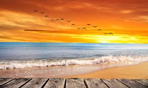 木板与潮起潮落的大海摄影高清图片