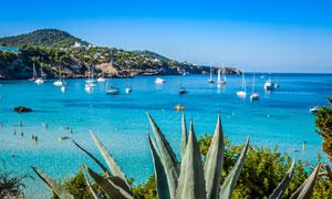 西班牙伊维萨海景岛屿风光摄影图片