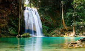 森林中唯美的瀑布和溪流摄影图片