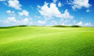 蓝天白云下的绿色草原摄影图片素材