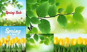 树枝绿叶与郁金香花草植物矢量素材