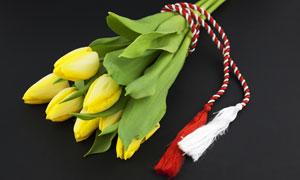 黄色的郁金香花束特写摄影高清图片