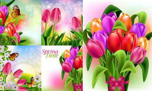 草丛彩蛋与蝴蝶郁金香花等矢量素材