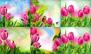 梦幻光斑与郁金香花卉植物矢量素材