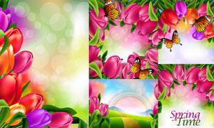 彩虹光斑与春天郁金香鲜花矢量素材