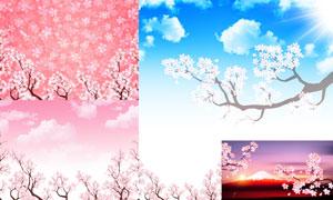 蓝天白云与春天樱花等风景矢量素材