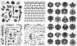 白描玫瑰花与黑白花纹图案矢量素材