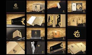 龙城国际地产VI设计模板矢量素材