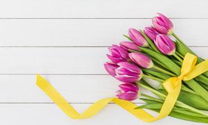 系着黄色丝带的郁金香花束高清图片