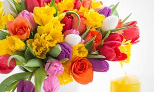 黄色蜡烛与郁金香花束摄影高清图片