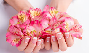 捧着手心里的粉红花朵摄影高清图片