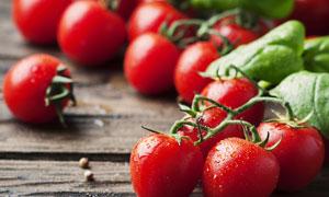 新鲜的红色小番茄微距摄影高清图片