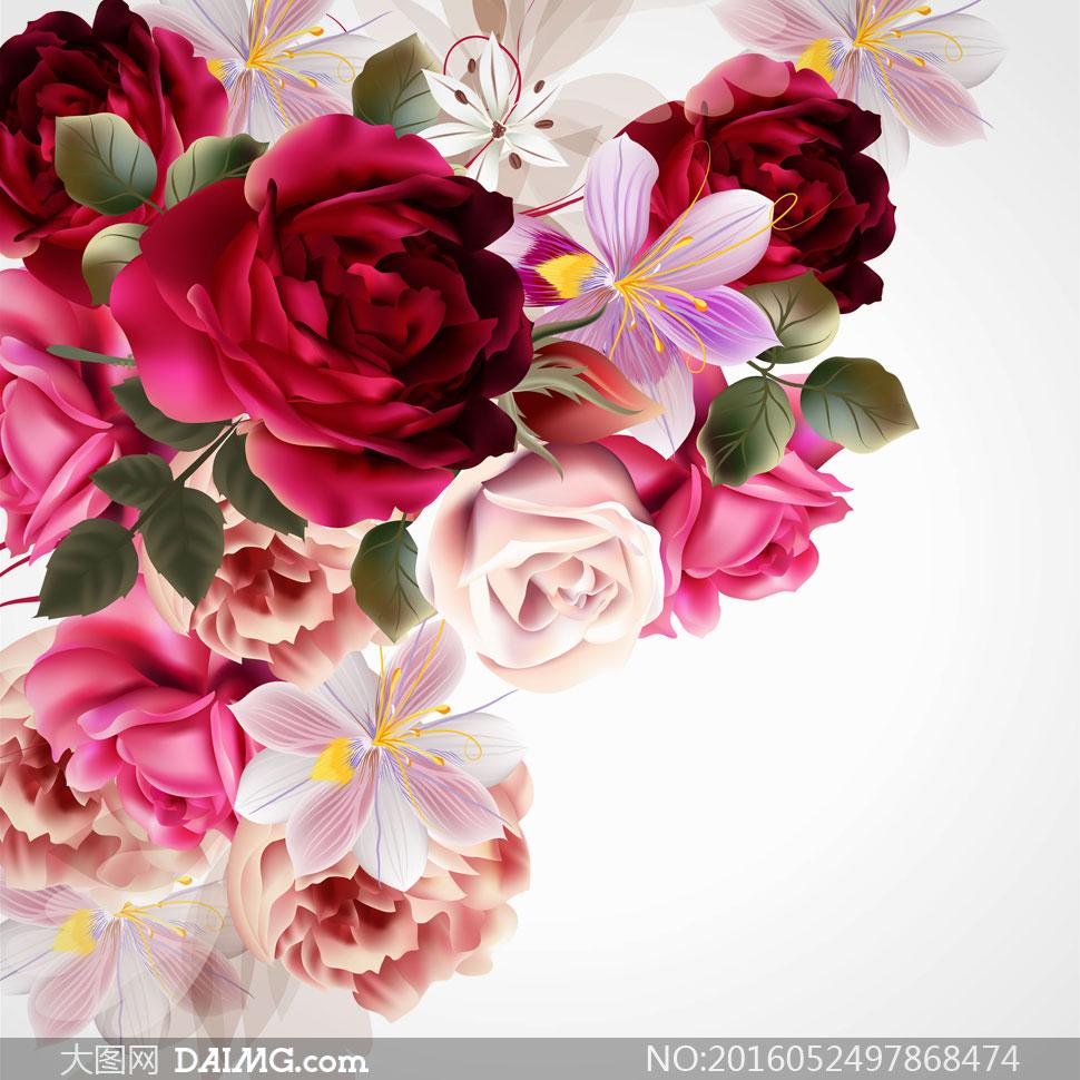 红色等矢量风格玫瑰花绘画高清图片