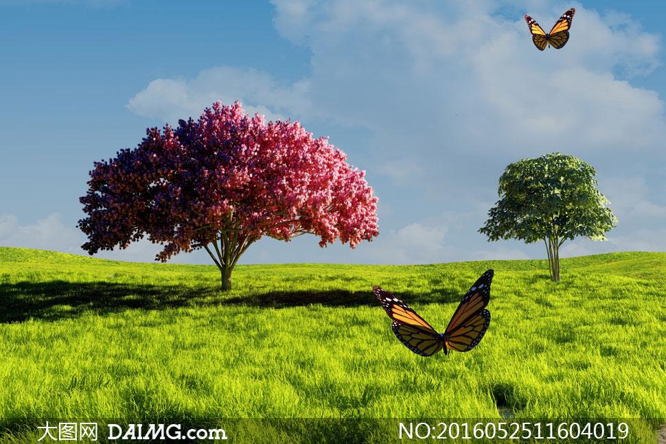 蓝天白云草地大树蝴蝶摄影高清图片