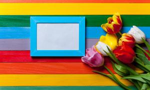 五彩木板上的郁金香花摄影高清图片