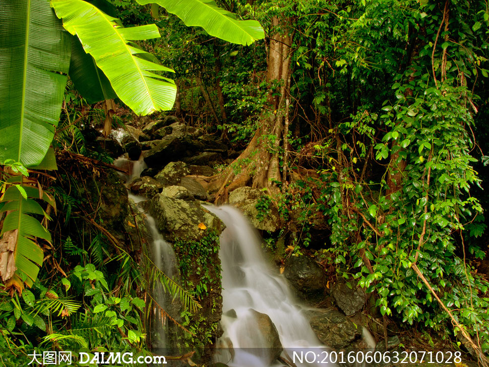 自然风景 > 素材信息                          秋天红色落叶与溪水
