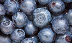 精心遴选出的蓝莓特写摄影高清图片