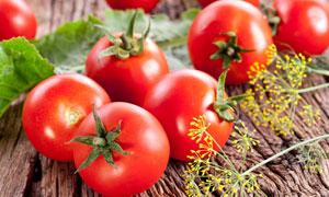 新鲜美味的红色西红柿摄影高清图片