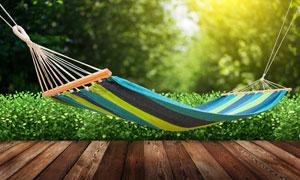 灌木丛木板与吊床特写摄影高清图片