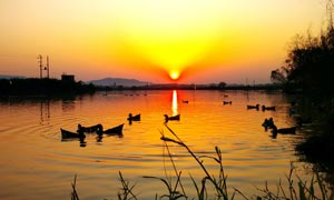 乡村野外唯美的日落美景摄影图片