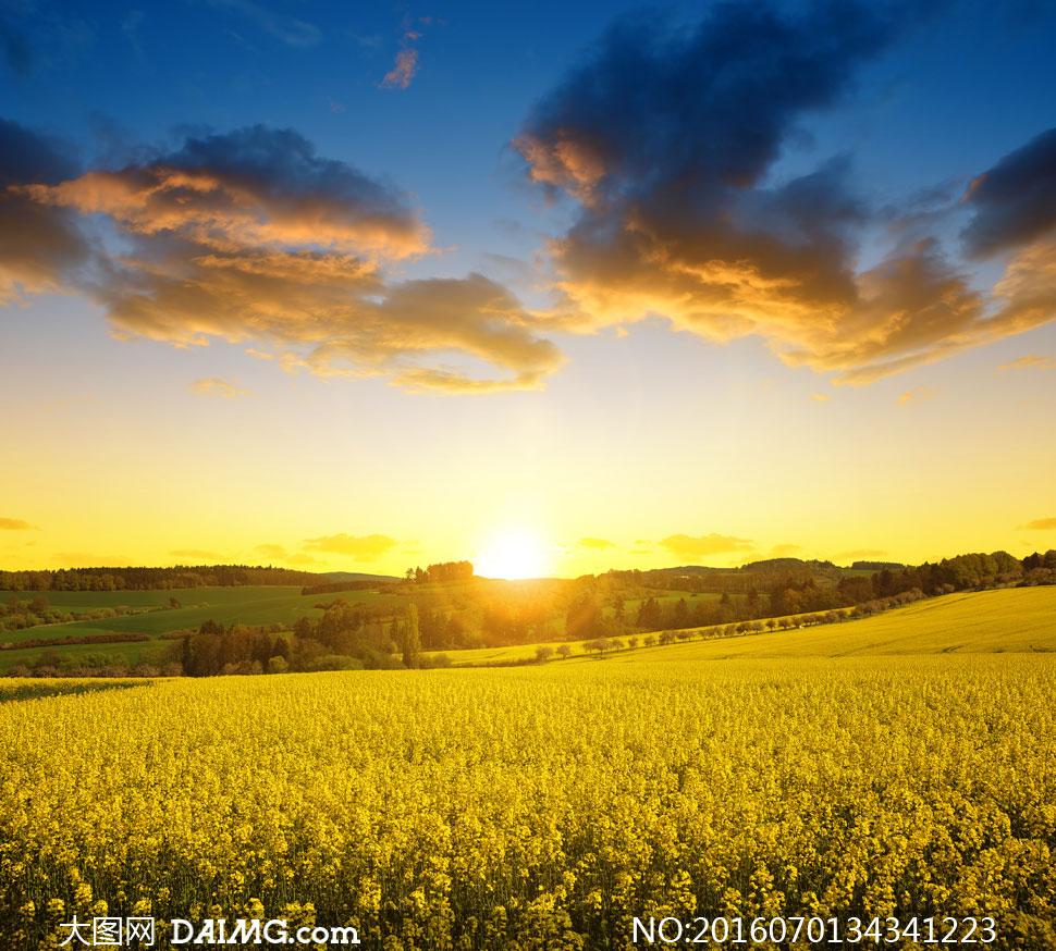 大图首页 高清图片 自然风景 > 素材信息          天空云朵雪山自然