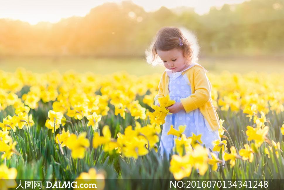 花田里的可爱儿童人物摄影高清图片