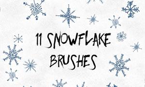11款手绘雪花形状PS笔刷