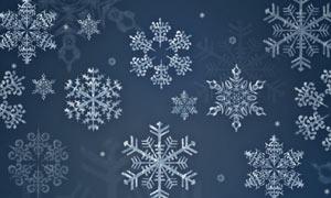 12款冬季雪花形状PS笔刷