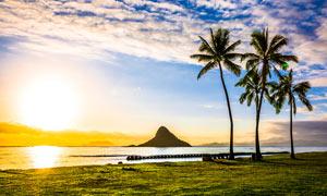 海邊美麗的日出美景攝影圖片