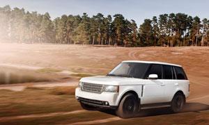 白色汽车与茂密的树林摄影高清图片